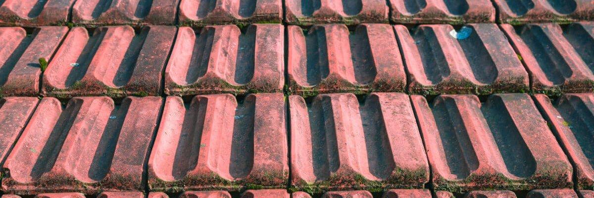 Roof-1200x795